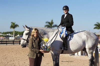 Reitsportnews Die Pferdesportagentur South Florida