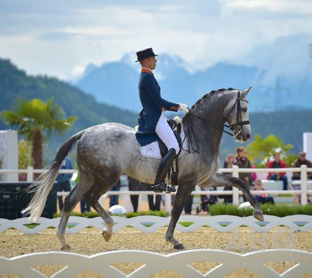 reitsportnews die pferdesportagentur cdi4 cdi3 cdiu25 glock horse performance center hans. Black Bedroom Furniture Sets. Home Design Ideas