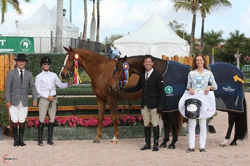 Reitsportnews Die Pferdesportagentur Winter Equestrian