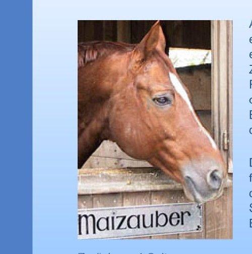 reitsportnews die pferdesportagentur trakehner verband abschied von e h chardonnay und e h. Black Bedroom Furniture Sets. Home Design Ideas
